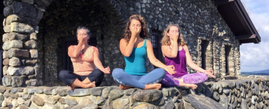 Online Pranayama & Meditation Teacher Training- Nov 2020