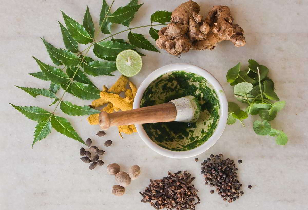A mortar, pestle, and a circle of Ayurvedic herbs