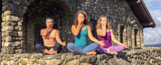 Online Pranayama & Meditation Teacher Training