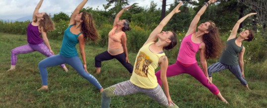 Ayurvedic Yoga Teacher Training- Online