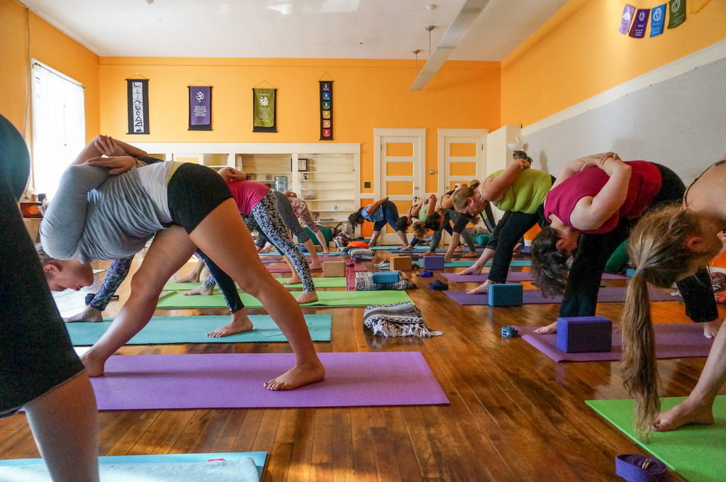 A class of yoga students in forward bends