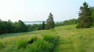 A grassy path runs down a hillside meadow at Rolling Meadows retreat